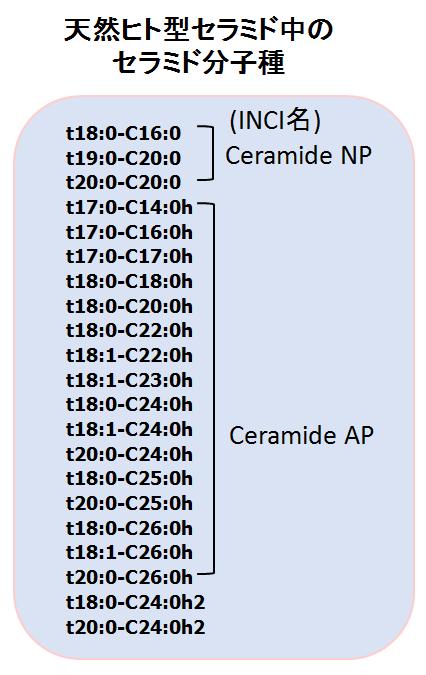 天然ヒト型セラミド中のセラミド分子種